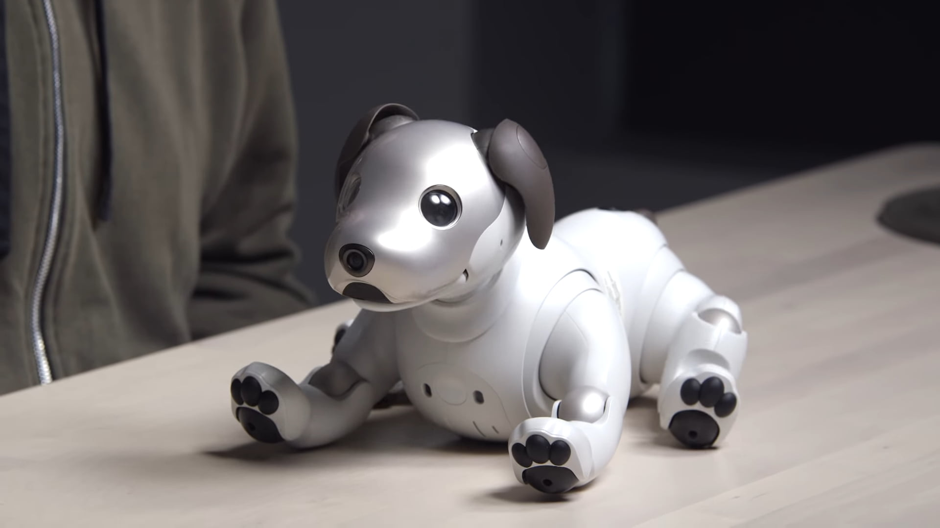 Sony's Aibo will not only make a cute but a diligent robopup pet