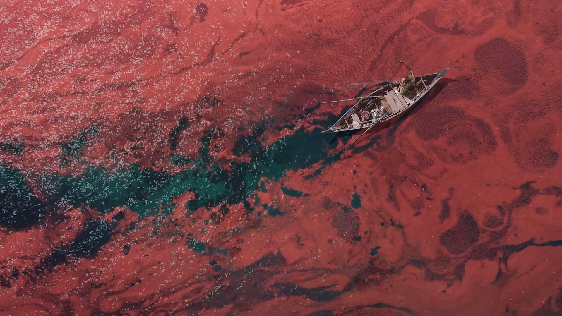 Westeros red sea