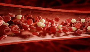 artificial blood, blood cells in vein