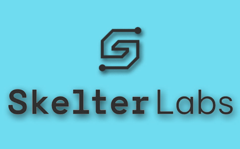 AI to expand in Southeast Asia: Skelter Labs