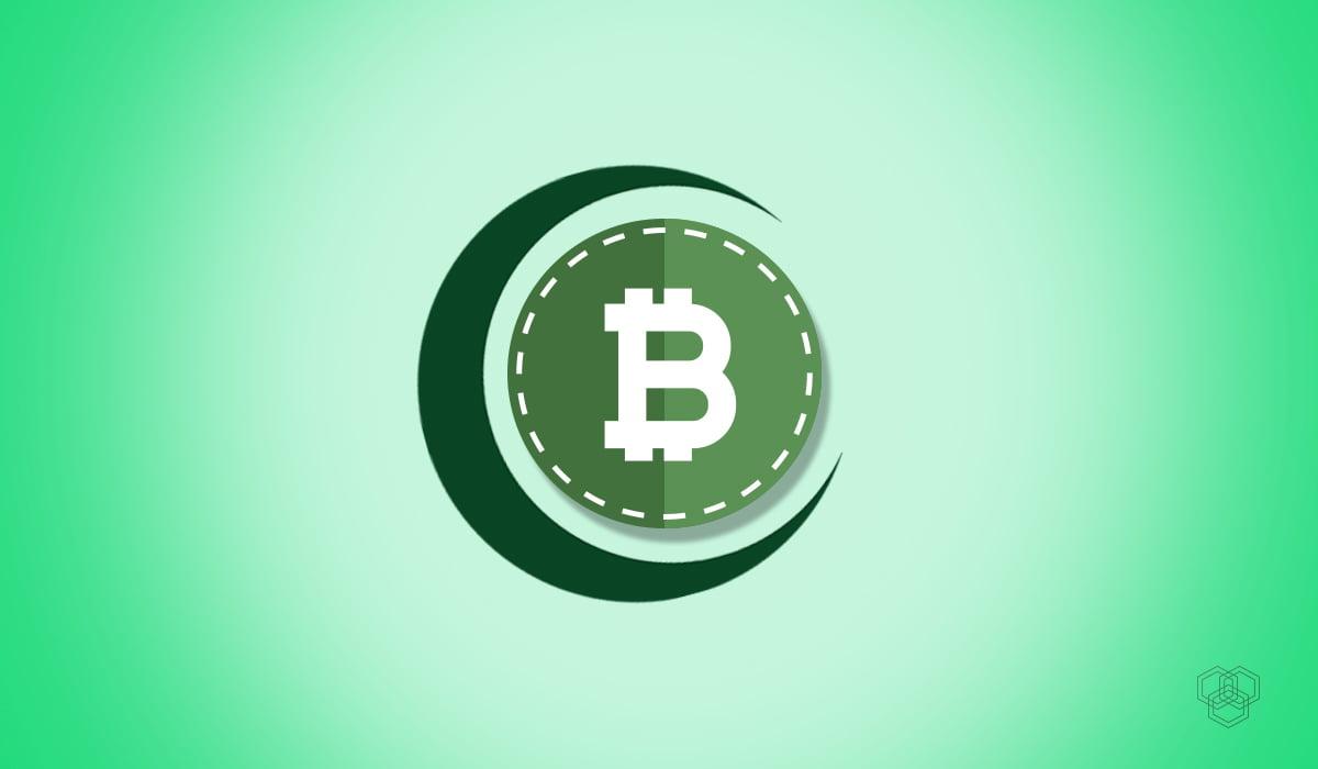 Halal Bitcoin illustration