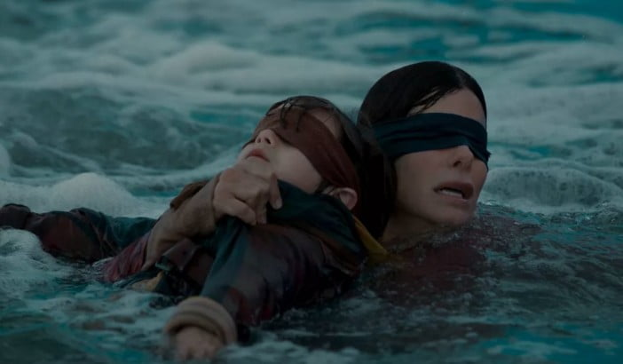Scene from Bird Box on Netflix