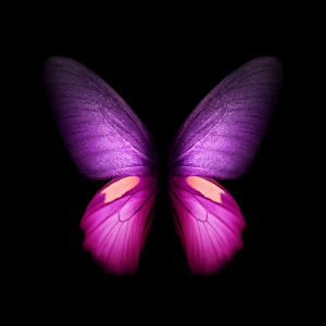 purple galaxy fold butterfly wallpaper