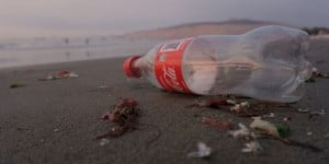 Coke plastic bottle