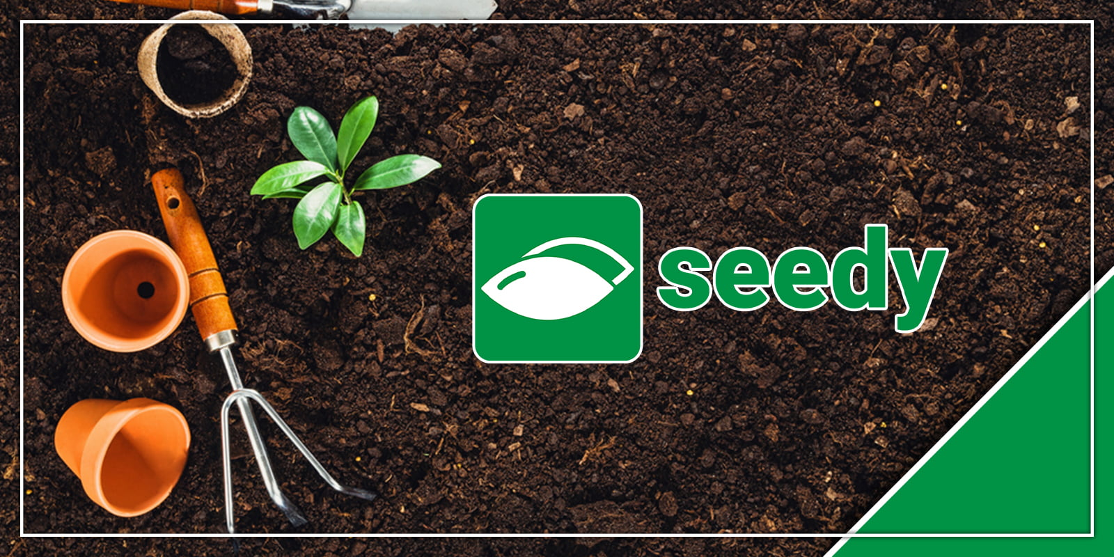 New app, Seedy, addresses the need for a cannabis-friendly online marketplace