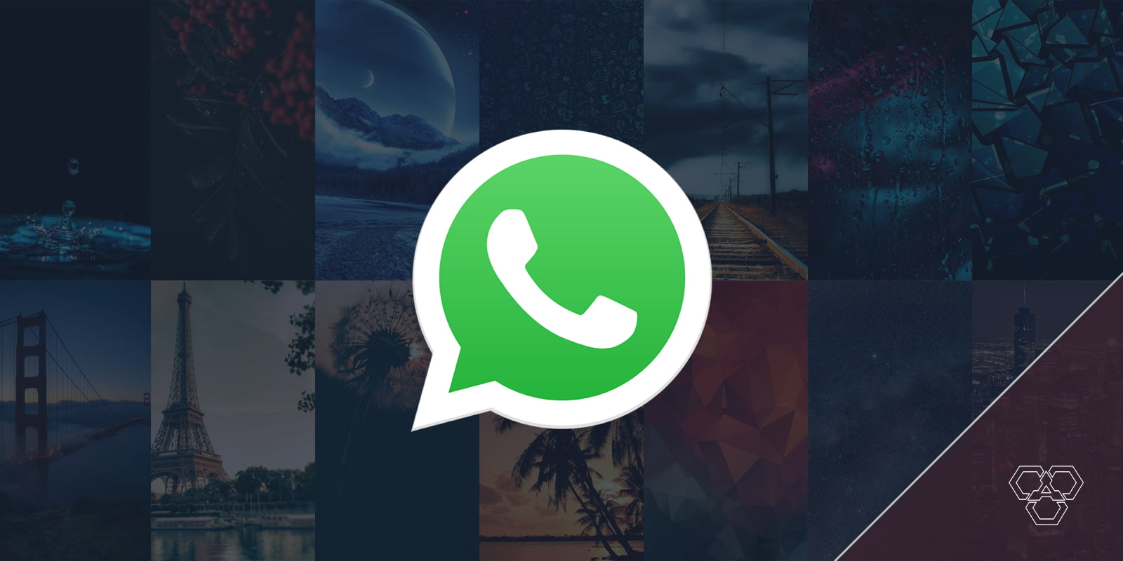WhatsApp's new feature lets you change wallpapers for specific chats
