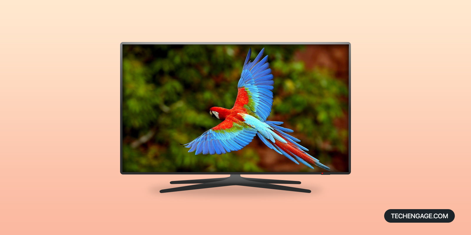 Best 4K TVs for Outdoor Use on Amazon for 2021
