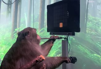 a nine-year-old macaque monkey, was implanted with a Neuralink isx weeks before, now playing video game while using its mind
